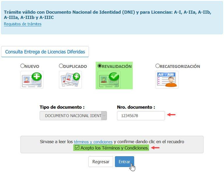 Revalidar la Licencia de Conducir Online - Paso 1